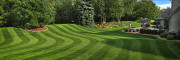 Lawn Care Service Blaine, Lawn Care Service Blaine, Lawn Care Service Minneapolis, Lawn Care Service Minneapolis