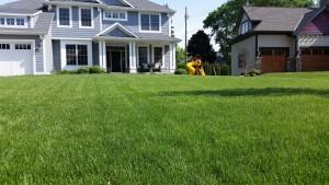 Property management lawn care