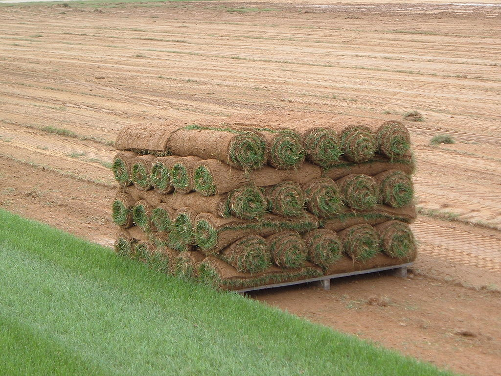 Tips for New Sod, Lawn Care Tips for New Sod, Lawn Care Service Minneapolis, Lawn Care Service Minneapolis